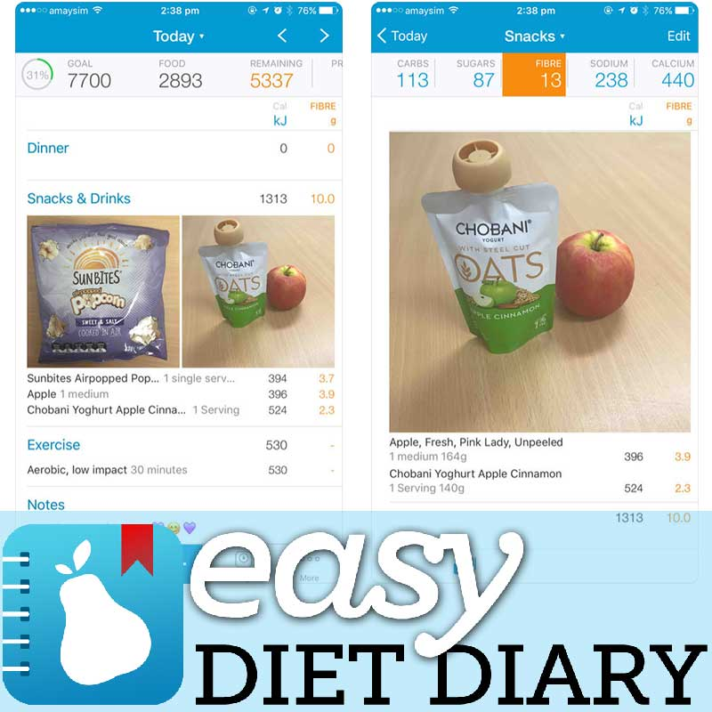 low carb easy diet diary